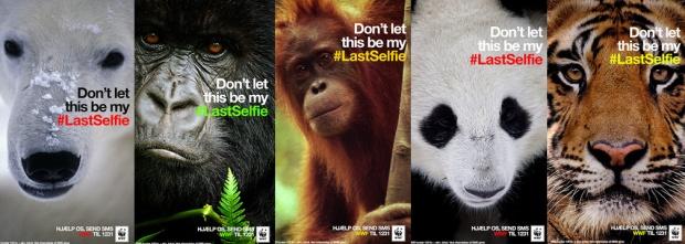 WWF-Selfie