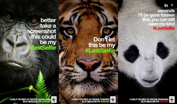WWF_LastSelfie20140415040638